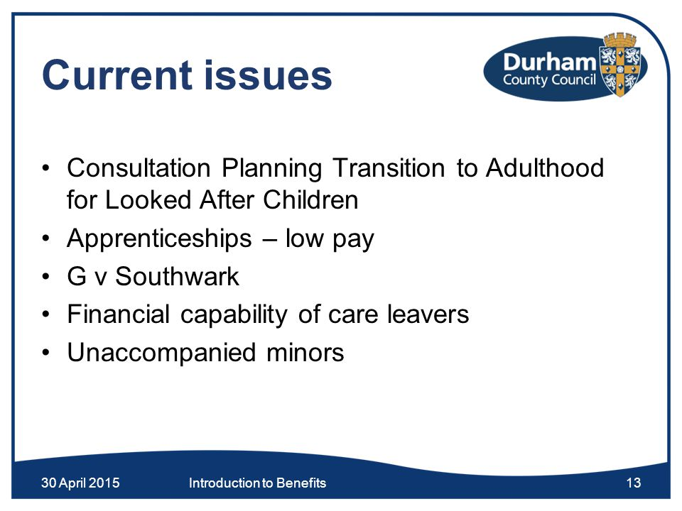 Current issues Consultation Planning Transition to Adulthood for Looked After Children Apprenticeships – low pay G v Southwark Financial capability of care leavers Unaccompanied minors 30 April 2015Introduction to Benefits13