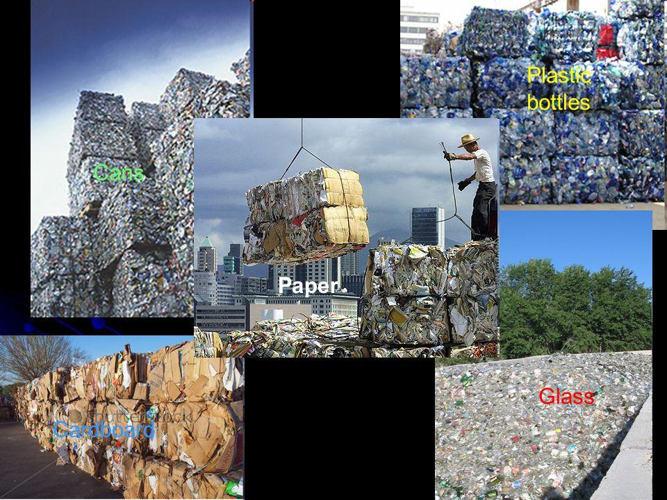 Plastic bottles Cans Cardboard Glass Paper