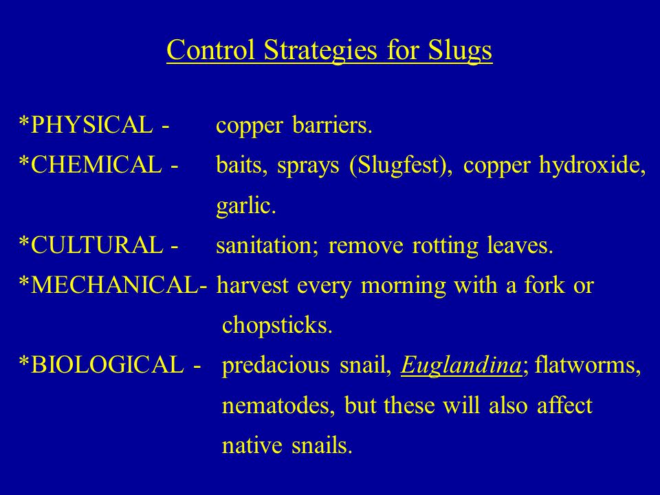 Control Strategies for Slugs *PHYSICAL - copper barriers.