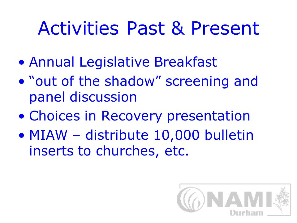 Activities Past & Present Annual Legislative Breakfast out of the shadow screening and panel discussion Choices in Recovery presentation MIAW – distribute 10,000 bulletin inserts to churches, etc.