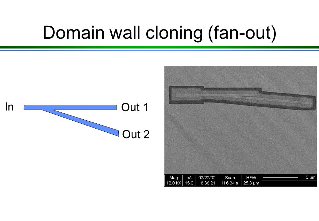 Domain wall cloning (fan-out) In Out 1 Out 2
