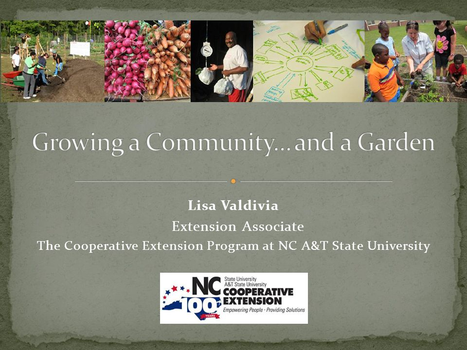 Does your community want a community garden? Is there broad support for it?
