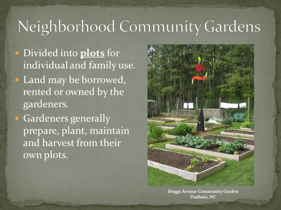 Many ways to start/manage a community garden Engage & empower those affected by the garden at every stage of planning, building, & managing garden Don't do for others what they can do for themselves People are motivated by their own self interests, find out what those interests are Each community member has something to contribute Source -- Growing Communities Curriculum: Community Building and Organizational Development through Community Gardening by Jeanette Abi-Nader, David Buckley, Kendall Dunnigan and Kristen Markley