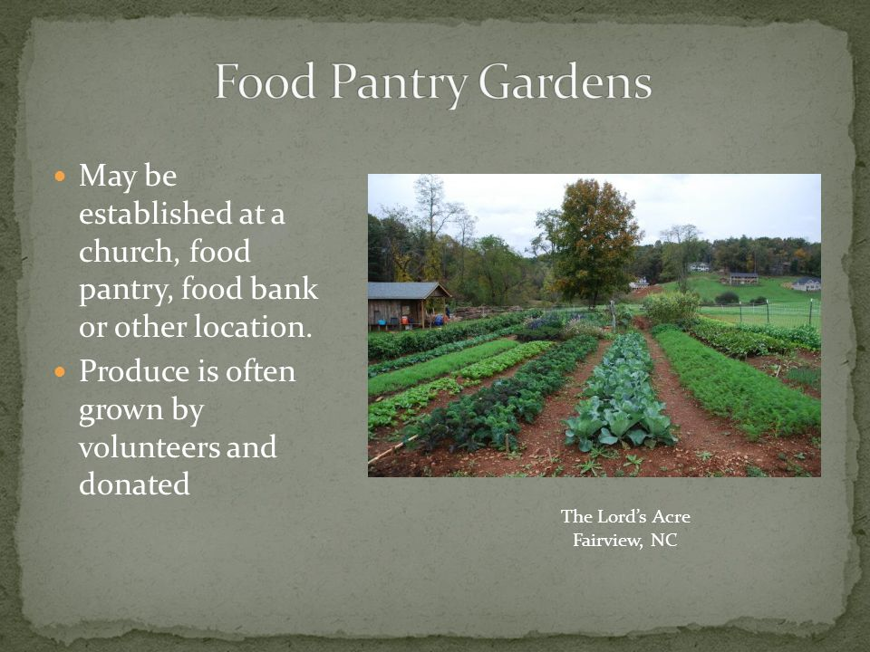 Offer frequent educational opportunities Visit other community gardens Work, eat and celebrate together!