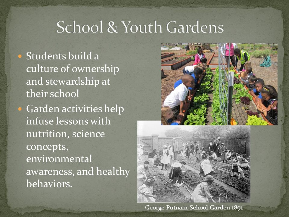 Teach job skills to youth or other groups.Grow and sell the produce, honey, etc.