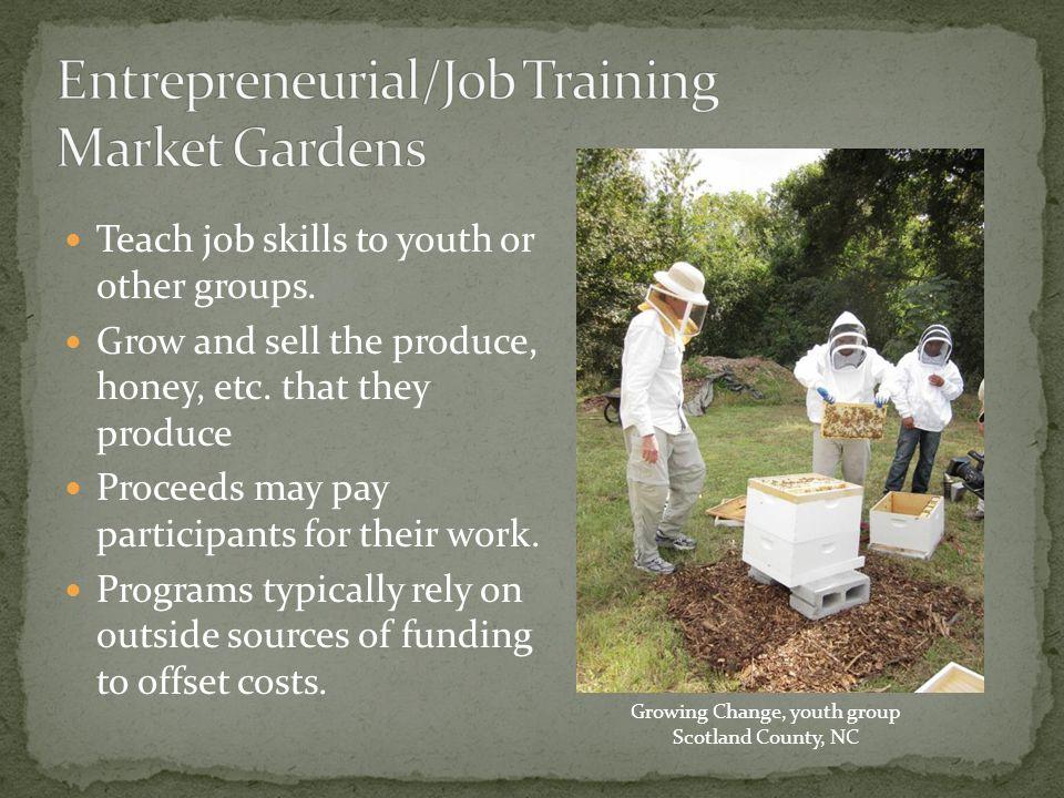Briggs Avenue Community Garden Durham, NC