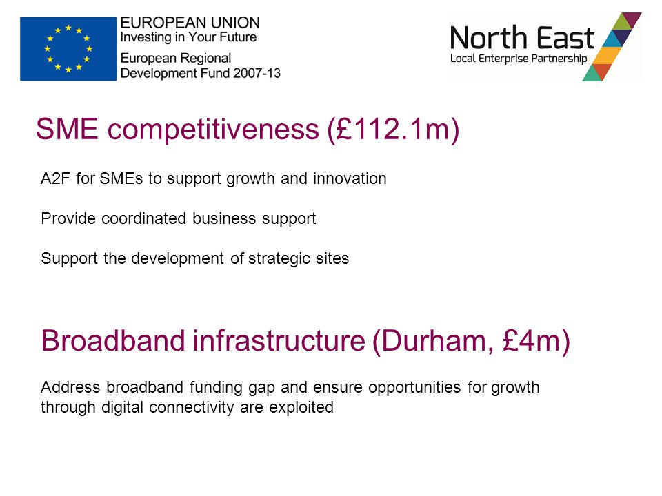 SME competitiveness (£112.1m) A2F for SMEs to support growth and innovation Provide coordinated business support Support the development of strategic