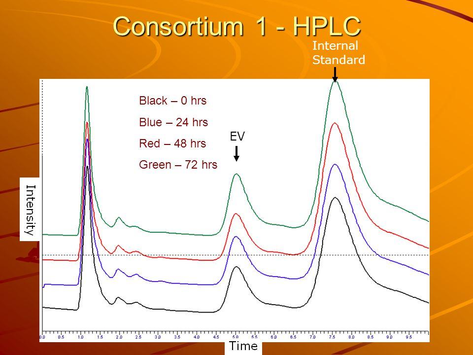 Consortium 1 - HPLC Black – 0 hrs Blue – 24 hrs Red – 48 hrs Green – 72 hrs Internal Standard EV
