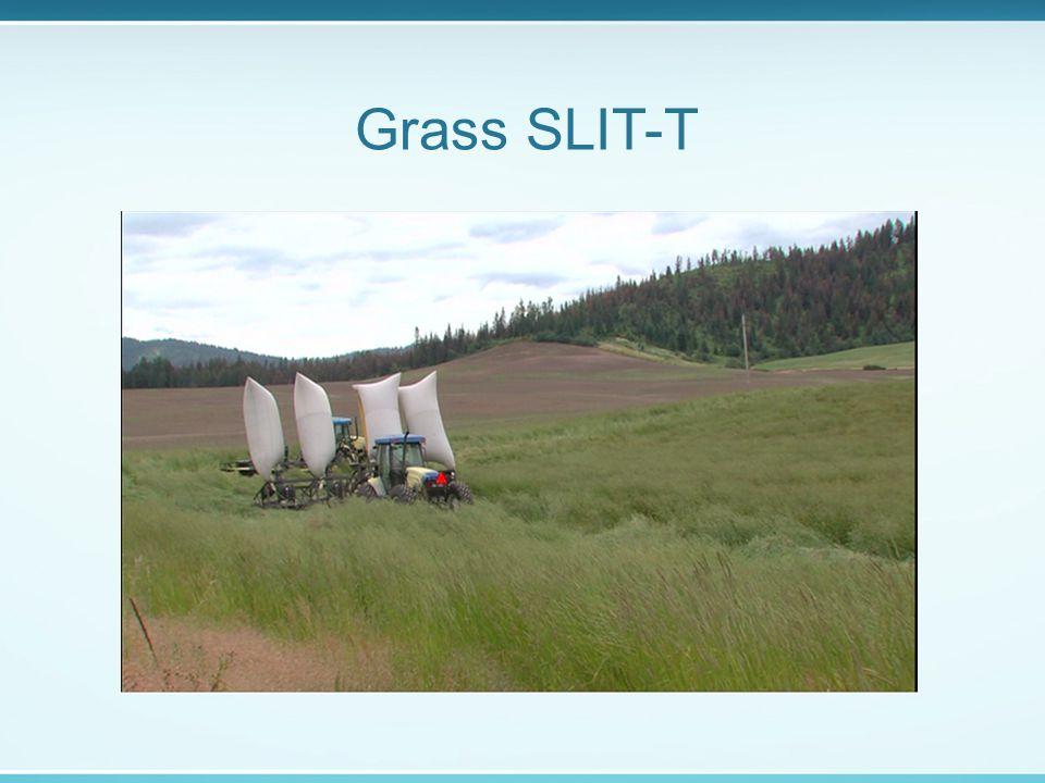 Grass SLIT-T
