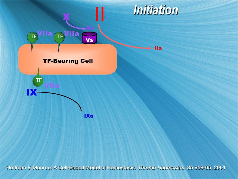 II IIa VIIa X Xa TF-Bearing Cell TF VaInitiation VIIa IX IXa Hoffman & Monroe: A Cell-Based Model of Hemostasis.