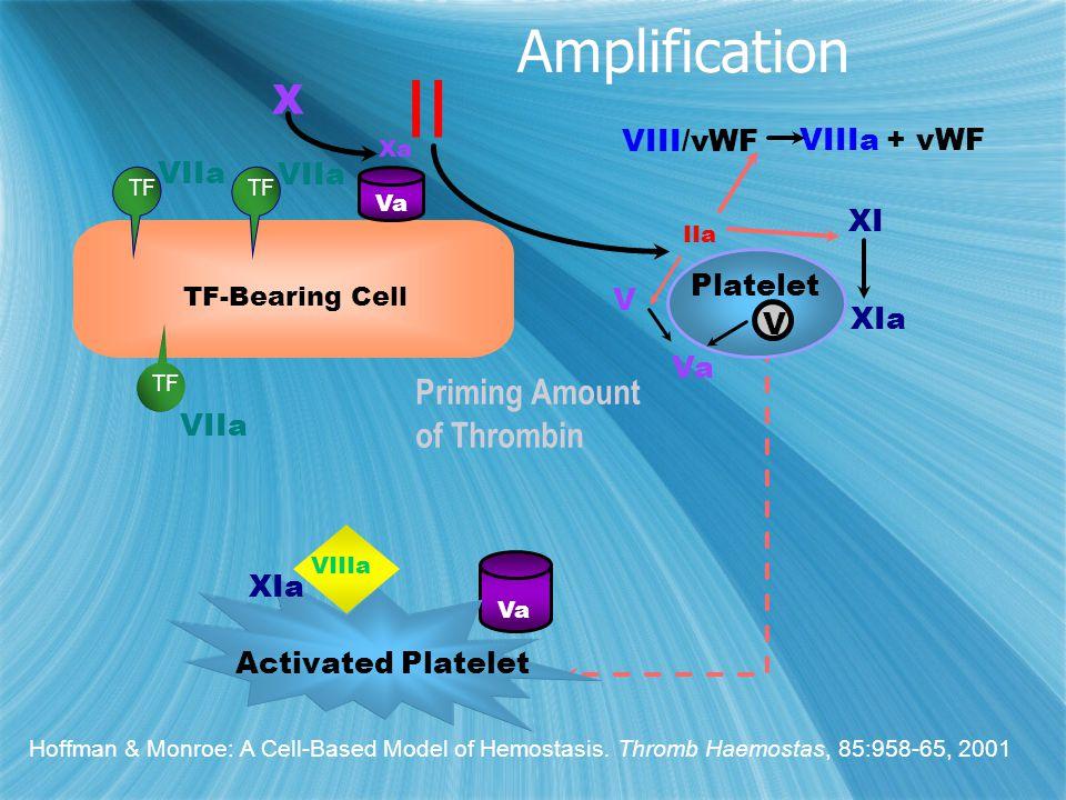 II IIa VIII/vWF XI XIa Platelet Va V VIIIa + vWF V VIIa X Xa TF-Bearing Cell TF Va Activated Platelet Va XIa VIIIa Priming Amount of Thrombin Hoffman & Monroe: A Cell-Based Model of Hemostasis.