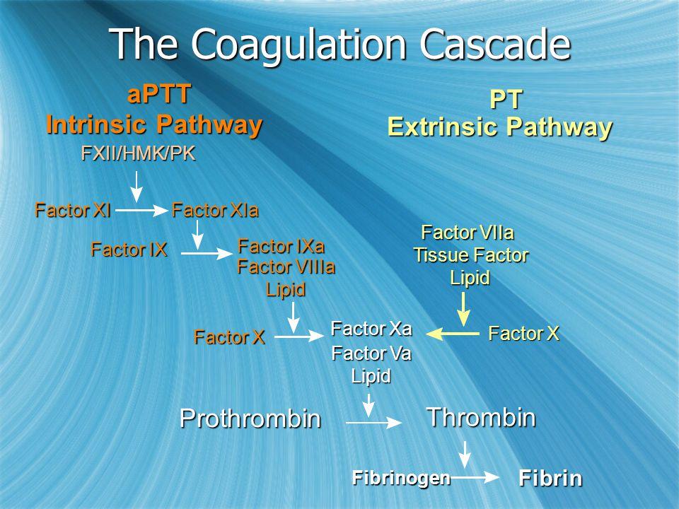 Extrinsic Pathway Factor IXa Factor VIIIa Lipid Factor XIa Factor XI FXII/HMK/PK Factor IX Factor Xa Factor Va Lipid Factor X Prothrombin Fibrin Factor VIIa Tissue Factor Lipid Intrinsic Pathway PT aPTT Fibrinogen The Coagulation Cascade Thrombin