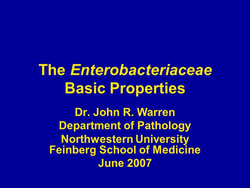 The Enterobacteriaceae Basic Properties Dr.John R.