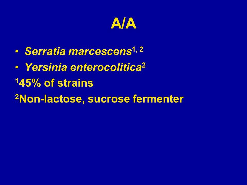 A/A Serratia marcescens 1, 2 Yersinia enterocolitica 2 1 45% of strains 2 Non-lactose, sucrose fermenter