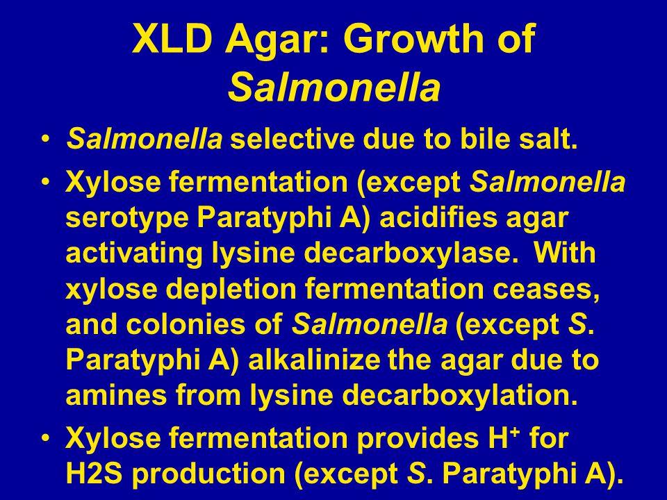 XLD Agar: Growth of Salmonella Salmonella selective due to bile salt.