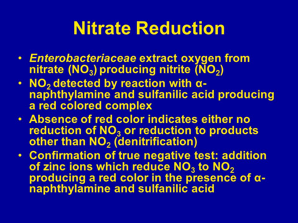 Nitrate Reduction Enterobacteriaceae extract oxygen from nitrate (NO 3 ) producing nitrite (NO 2 ) NO 2 detected by reaction with α- naphthylamine and sulfanilic acid producing a red colored complex Absence of red color indicates either no reduction of NO 3 or reduction to products other than NO 2 (denitrification) Confirmation of true negative test: addition of zinc ions which reduce NO 3 to NO 2 producing a red color in the presence of α- naphthylamine and sulfanilic acid