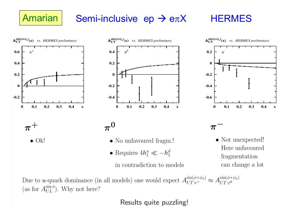 Amarian Semi-inclusive ep  e  X HERMES