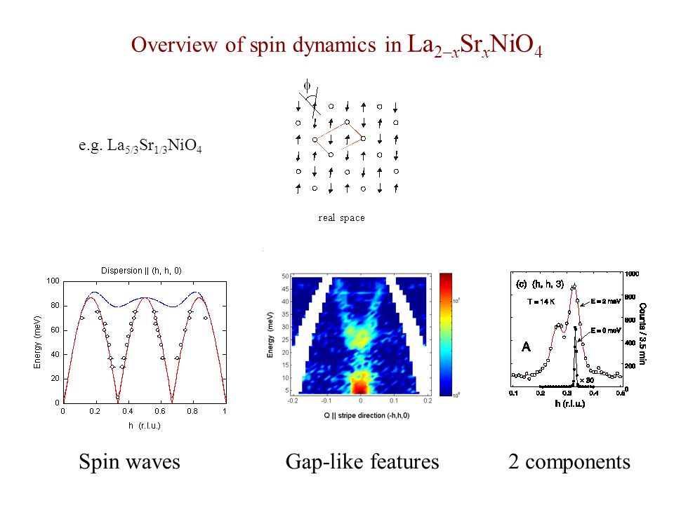 Overview of spin dynamics in La 2–x Sr x NiO 4 e.g. La 5/3 Sr 1/3 NiO 4 Spin wavesGap-like features2 components