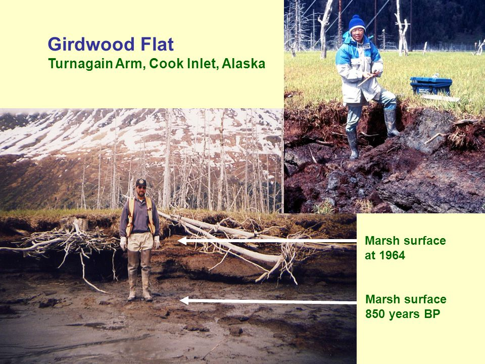 Girdwood Flat Turnagain Arm, Cook Inlet, Alaska Marsh surface 850 years BP Marsh surface at 1964