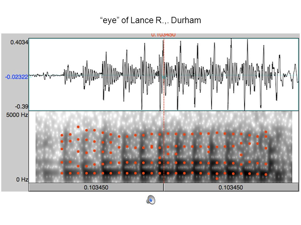 Southern Shift in the vowel system of Lance R., 45 [1997], Durham NC, TS627 wide