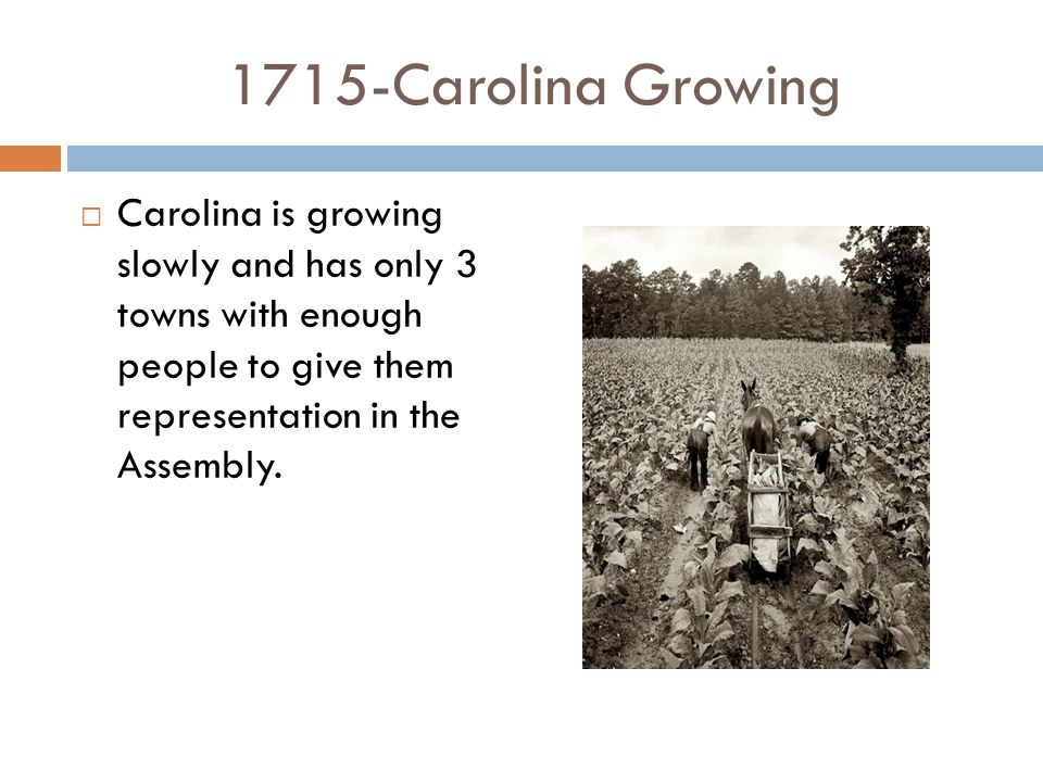 1715-Carolina Growing  Carolina is growing slowly and has only 3 towns with enough people to give them representation in the Assembly.