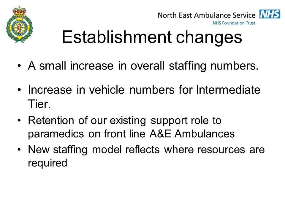 Establishment changes A small increase in overall staffing numbers.