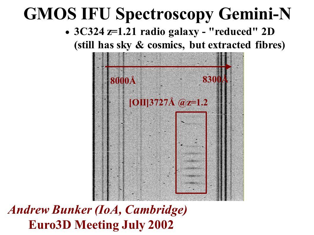 GMOS IFU Spectroscopy Gemini-N  3C324 z=1.21 radio galaxy - reduced 2D (still has sky & cosmics, but extracted fibres) Andrew Bunker (IoA, Cambridge) Euro3D Meeting July 2002 8000Å 8300Å [OII]3727Å @z=1.2