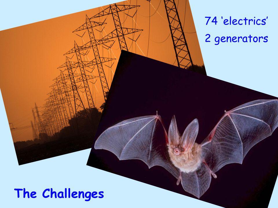 The Challenges 74 'electrics' 2 generators