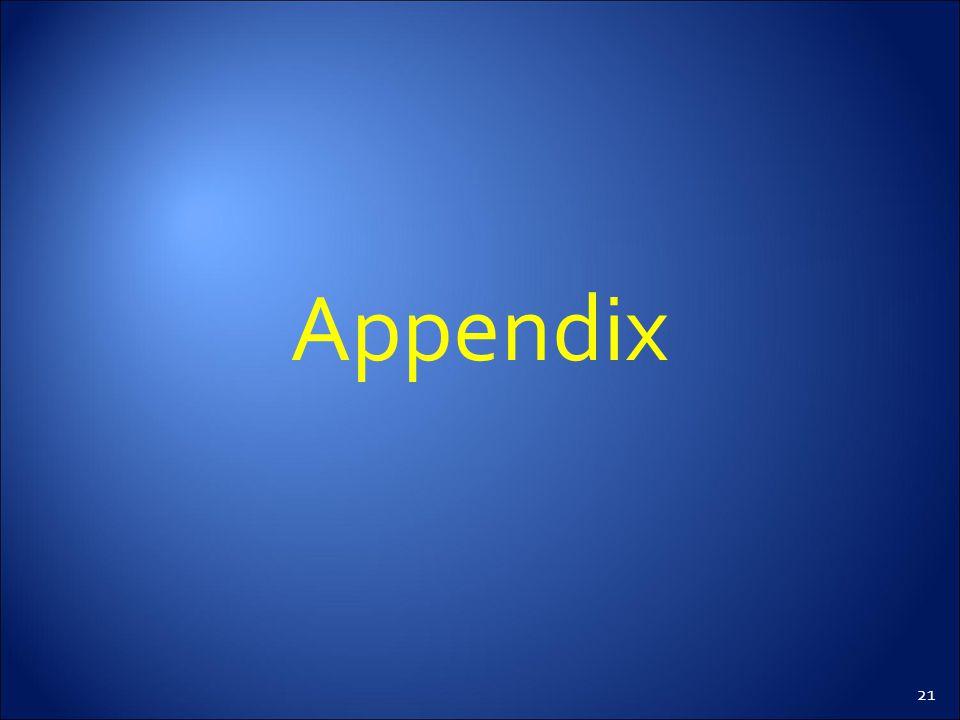 21 Appendix