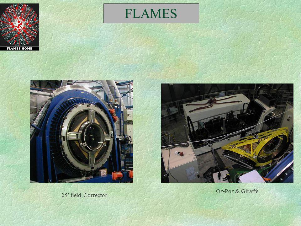 FLAMES Facility
