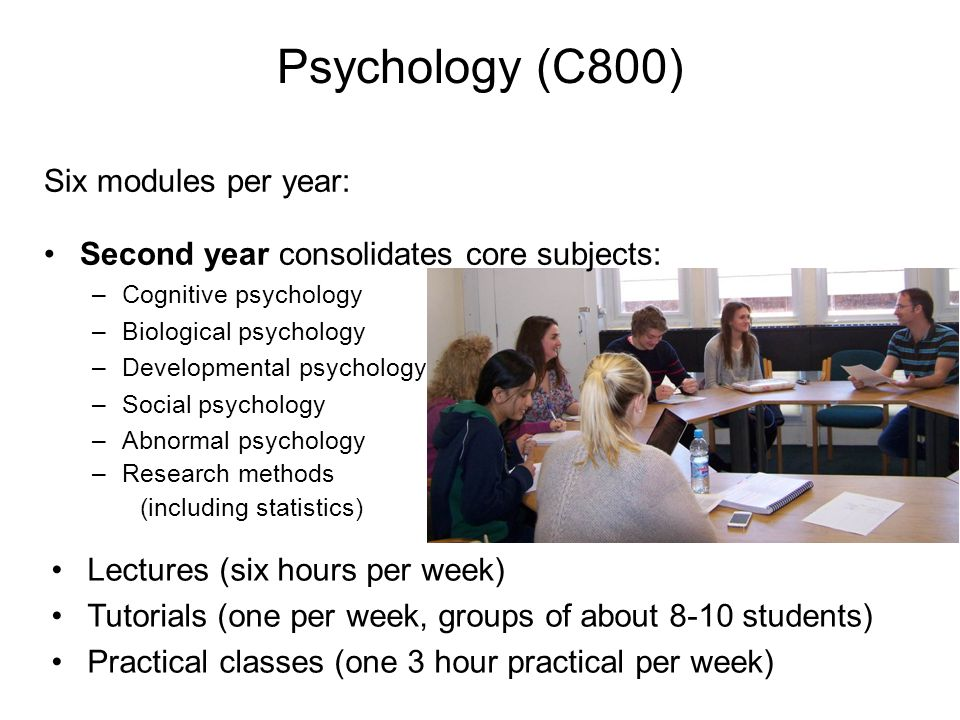 Six modules per year: Second year consolidates core subjects: –Cognitive psychology –Biological psychology –Developmental psychology –Social psychology –Abnormal psychology –Research methods (including statistics) Lectures (six hours per week) Tutorials (one per week, groups of about 8-10 students) Practical classes (one 3 hour practical per week) Psychology (C800)