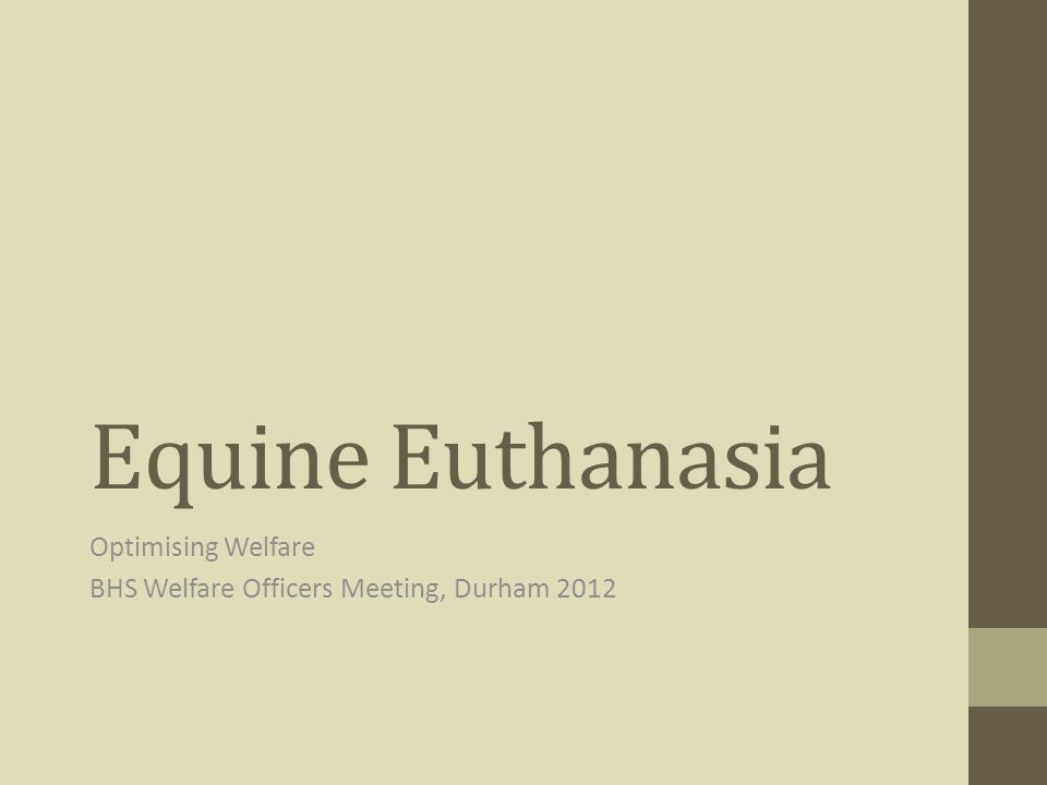Equine Euthanasia Optimising Welfare BHS Welfare Officers Meeting, Durham 2012