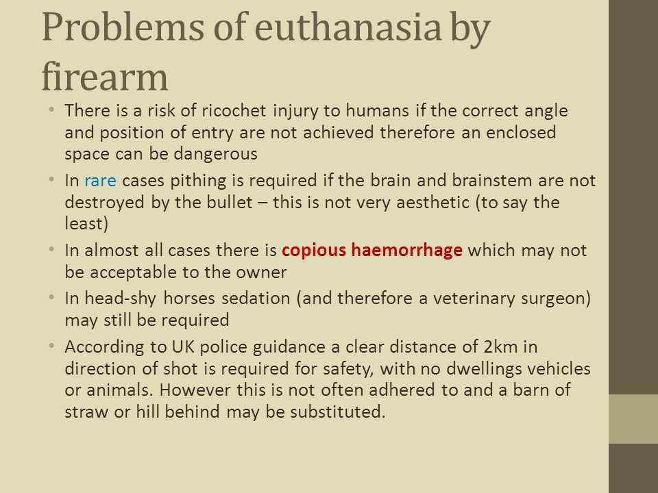 Problems of euthanasia by firearm There is a risk of ricochet injury to humans if the correct angle and position of entry are not achieved therefore a