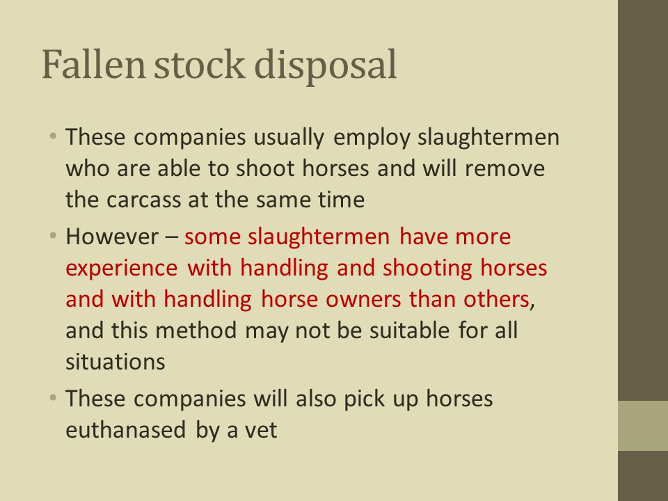 Fallen stock disposal These companies usually employ slaughtermen who are able to shoot horses and will remove the carcass at the same time However –
