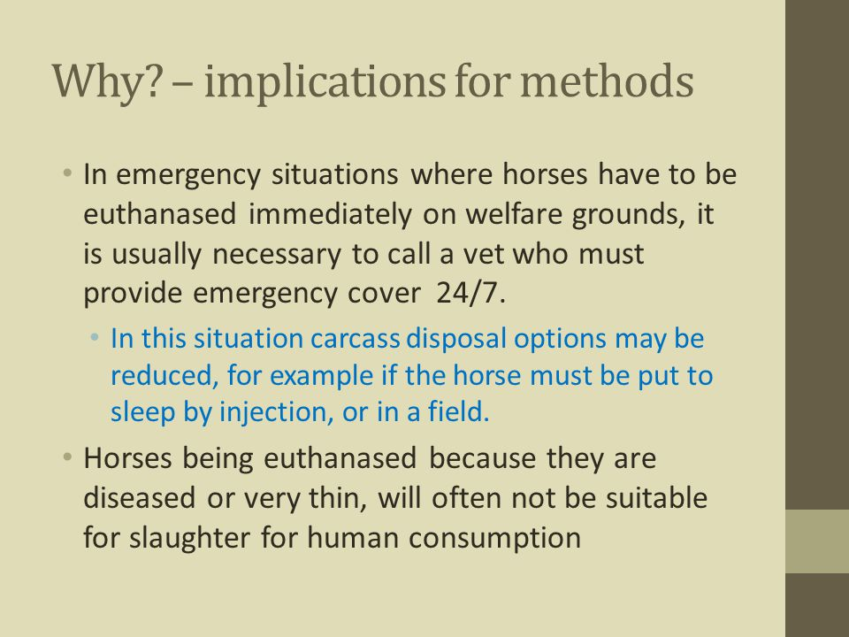 Why? – implications for methods In emergency situations where horses have to be euthanased immediately on welfare grounds, it is usually necessary to