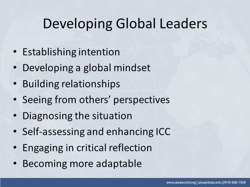 Developing Global Leaders Establishing intention Developing a global mindset Building relationships Seeing from others' perspectives Diagnosing the situation Self-assessing and enhancing ICC Engaging in critical reflection Becoming more adaptable