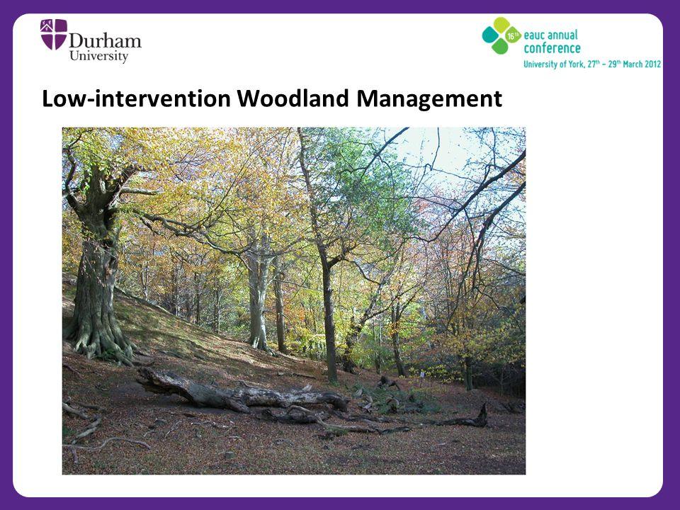 Low-intervention Woodland Management