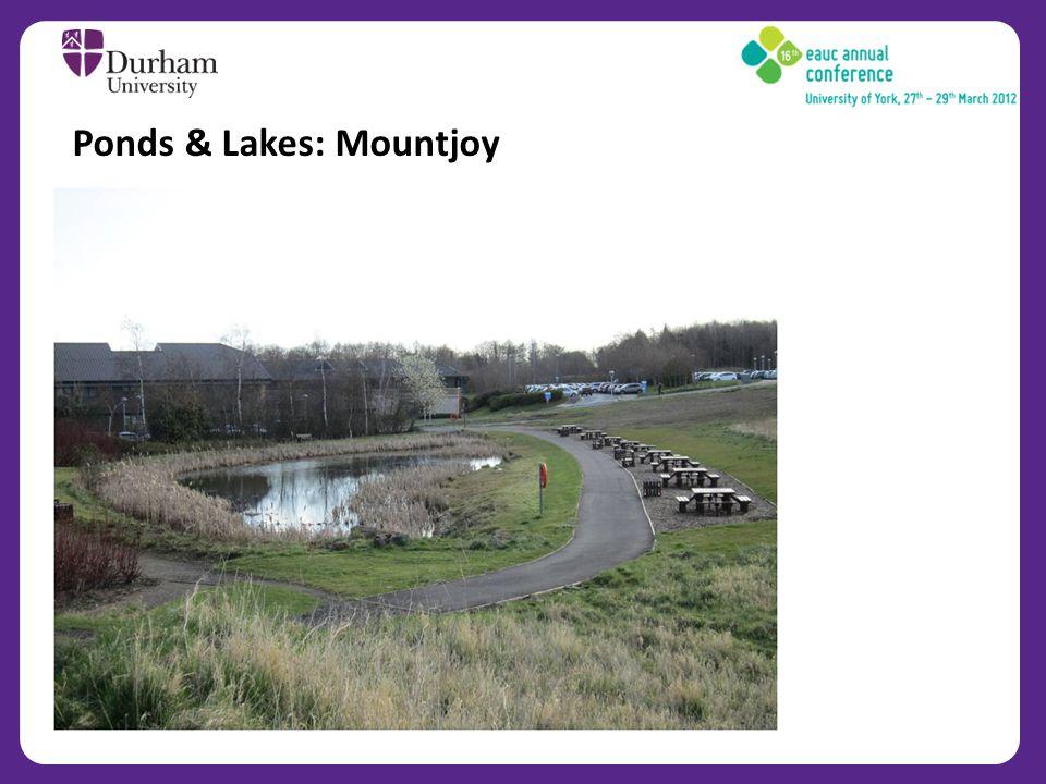 Ponds & Lakes: Mountjoy