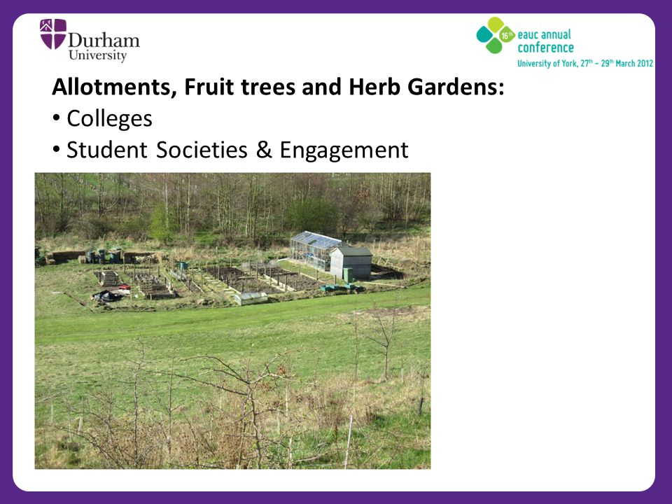 Allotments, Fruit trees and Herb Gardens: Colleges Student Societies & Engagement