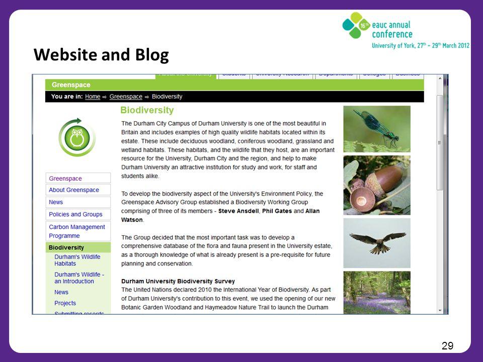 29 Website and Blog