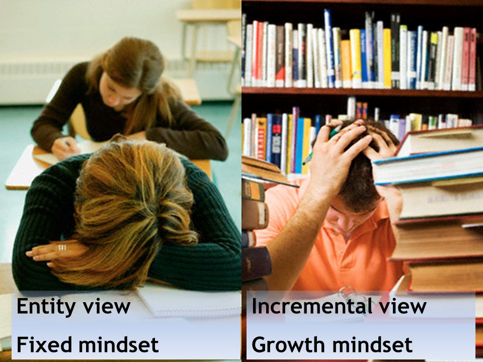 Entity view Fixed mindset Incremental view Growth mindset