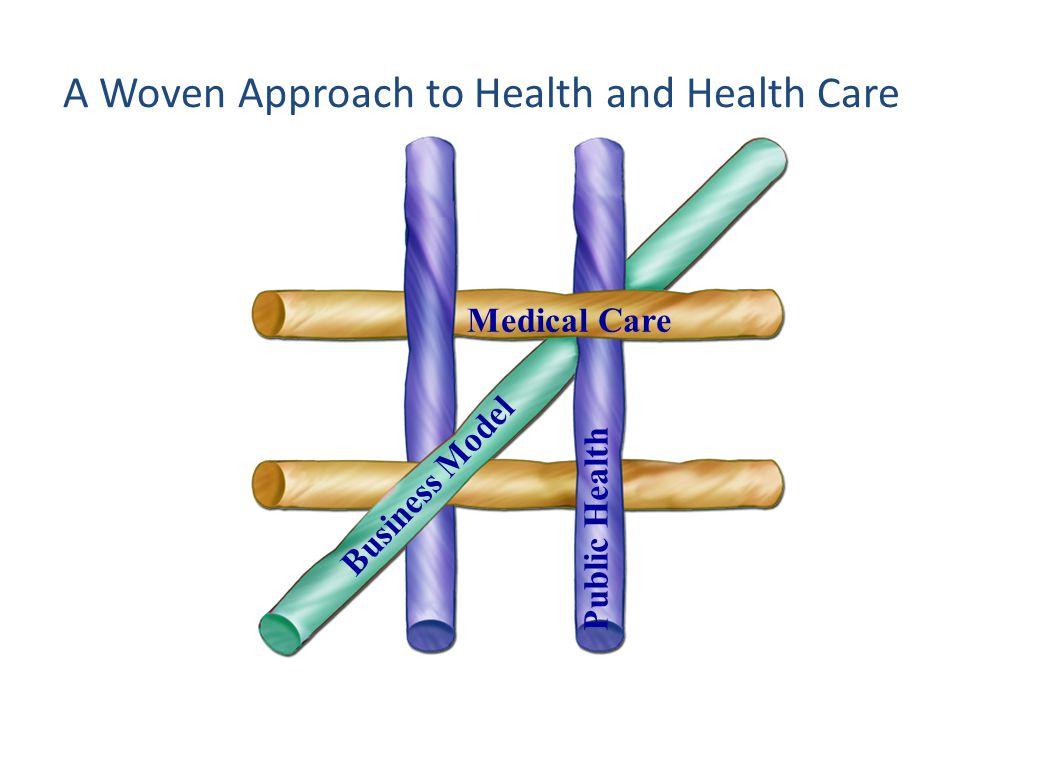 A Woven Approach to Health and Health Care Public Health Business Model CareMedical