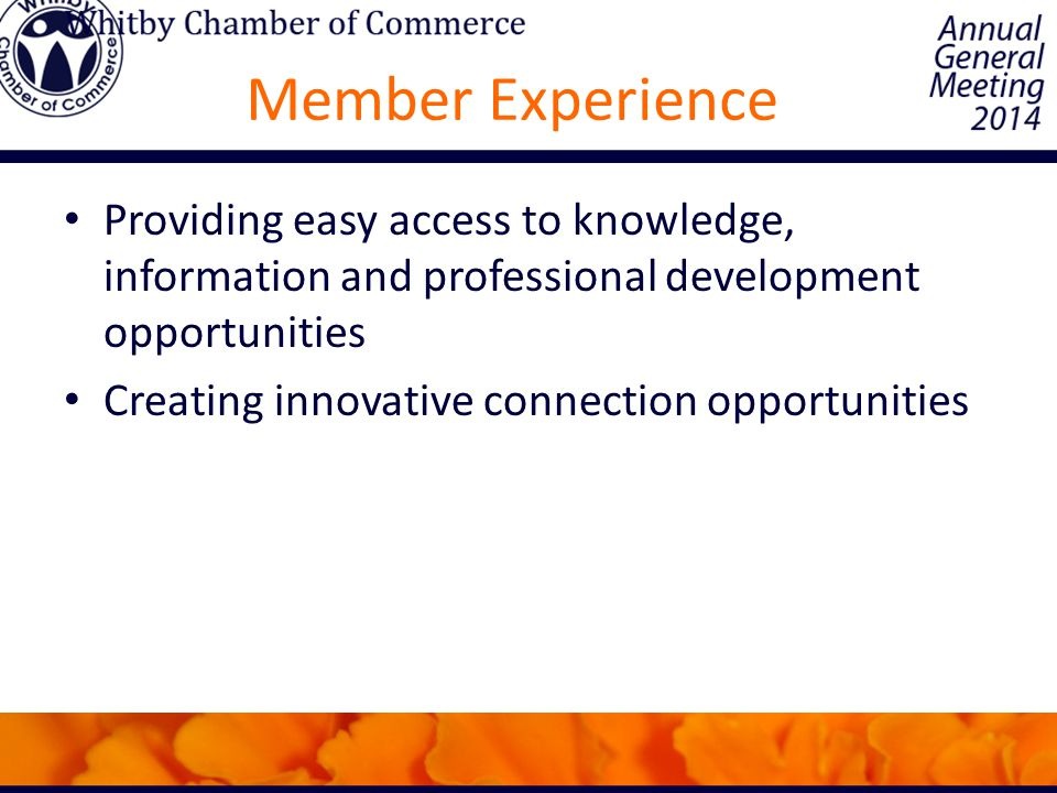 Member Experience Providing easy access to knowledge, information and professional development opportunities Creating innovative connection opportunities