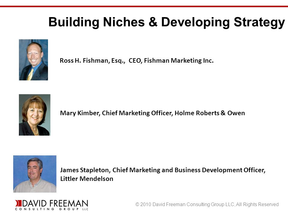 © 2010 David Freeman Consulting Group LLC, All Rights Reserved Building Niches & Developing Strategy Ross H.