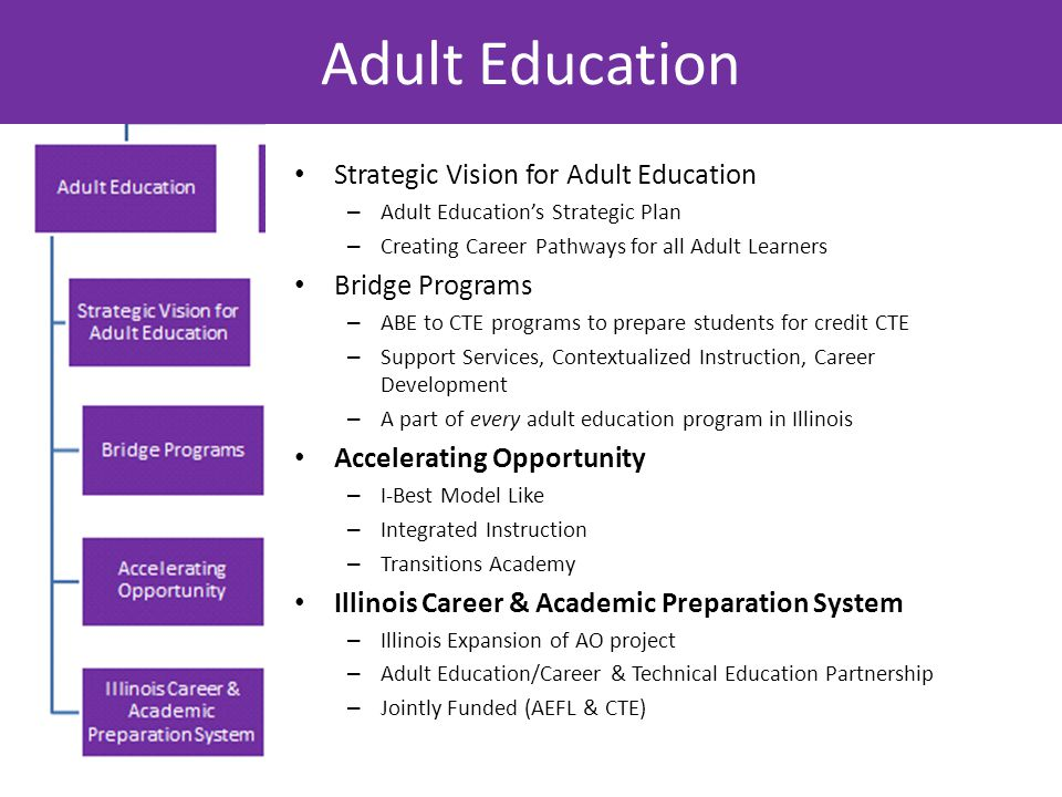 Adult Education Strategic Vision for Adult Education – Adult Education's Strategic Plan – Creating Career Pathways for all Adult Learners Bridge Programs – ABE to CTE programs to prepare students for credit CTE – Support Services, Contextualized Instruction, Career Development – A part of every adult education program in Illinois Accelerating Opportunity – I-Best Model Like – Integrated Instruction – Transitions Academy Illinois Career & Academic Preparation System – Illinois Expansion of AO project – Adult Education/Career & Technical Education Partnership – Jointly Funded (AEFL & CTE)