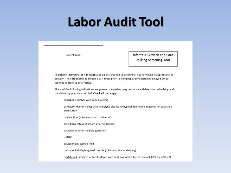 Labor Audit Tool