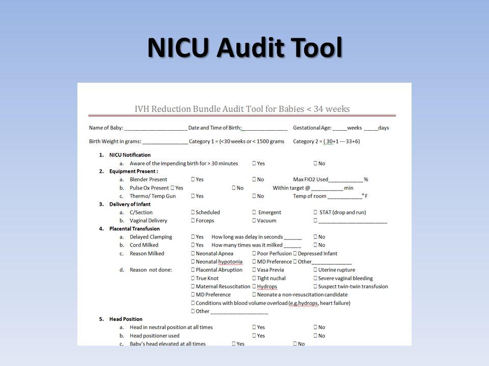 NICU Audit Tool