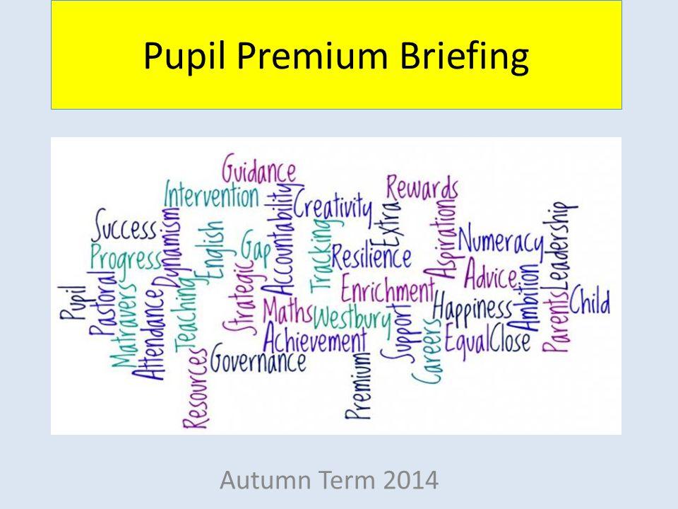 Pupil Premium Briefing Autumn Term 2014