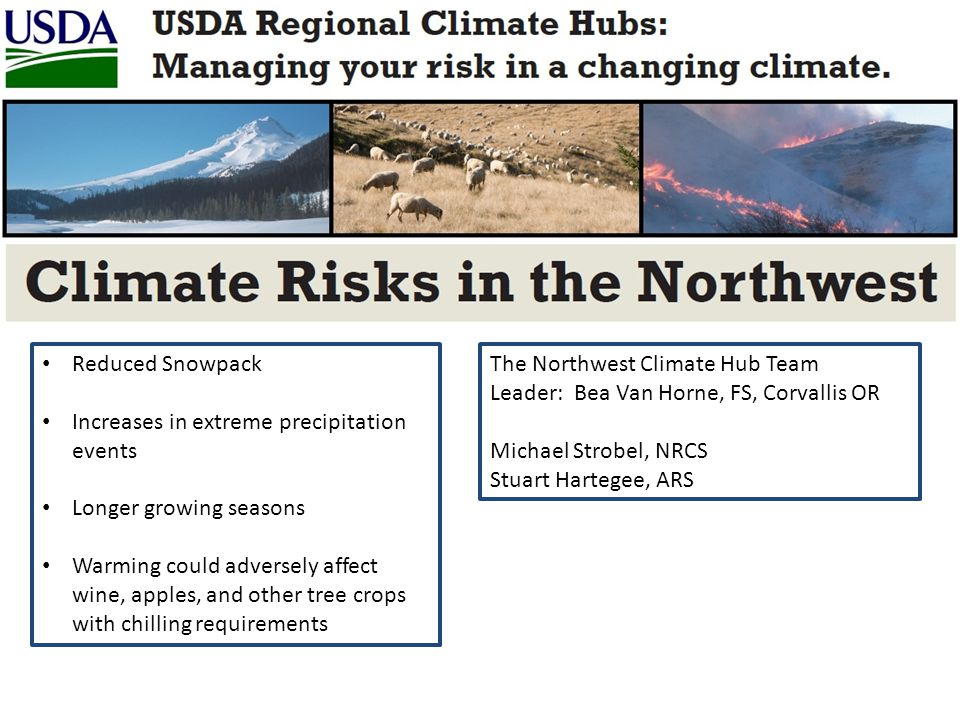 Reduced Snowpack Increases in extreme precipitation events Longer growing seasons Warming could adversely affect wine, apples, and other tree crops with chilling requirements The Northwest Climate Hub Team Leader: Bea Van Horne, FS, Corvallis OR Michael Strobel, NRCS Stuart Hartegee, ARS