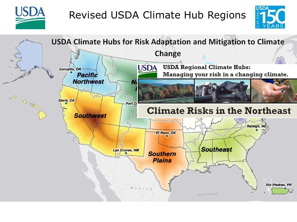 Higher temperatures Reduced crop yields and milk production from heat stress Extreme precipitation events Longer growing season Coastal Flooding The Northeast Climate Hub Team Leader: David Hollinger, FS Durham NH Peter Kleinman, ARS Darren Hickman, NRCS Leon Kochian, ARS Lindsey Rustad, FS